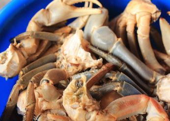 nettoyer le crabe frais