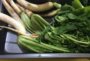 Tarte aux fanes de légumes