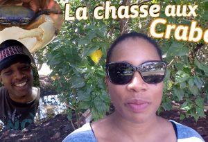 chasse aux crabes en Martinique