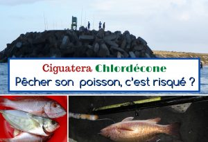 ciguatera chlordécone pêche côtière en Martinique, Antilles