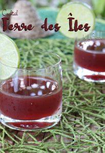 cocktail Terre des Îles