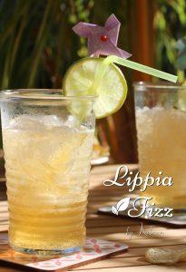 Lippia Fizz cocktail antillais brisée bière