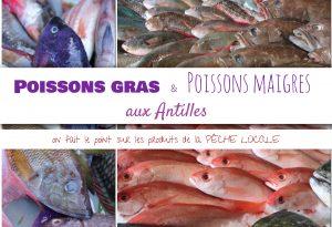 poissons gras antillais poissons maigres