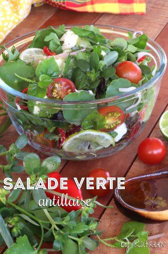 salade verte antillaise pourpier véronique herbe couresse