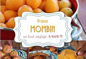 prune mombin Martinique